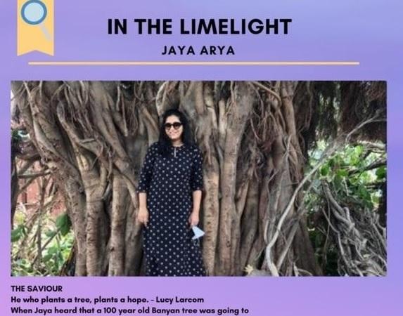 In the Limelight - Jaya Arya